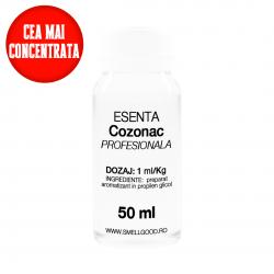 Esenta Profesionala COZONAC...